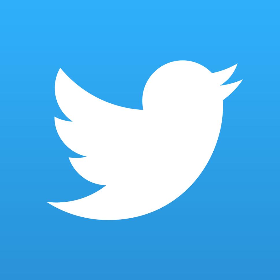 twitter réseaux sociaux  logo